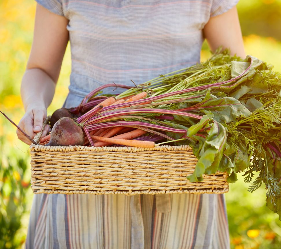 Woman carrying beets in basket