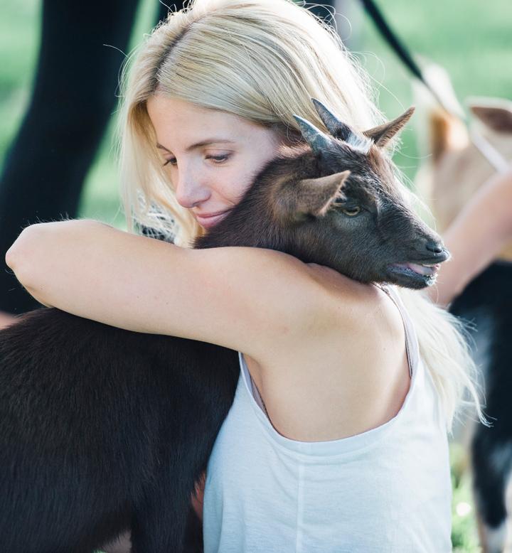 Bride hugs goat